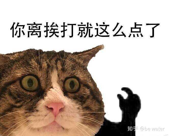 一个喜欢猫的男人_壁纸 动物 猫 猫咪 小猫 桌面 664_536