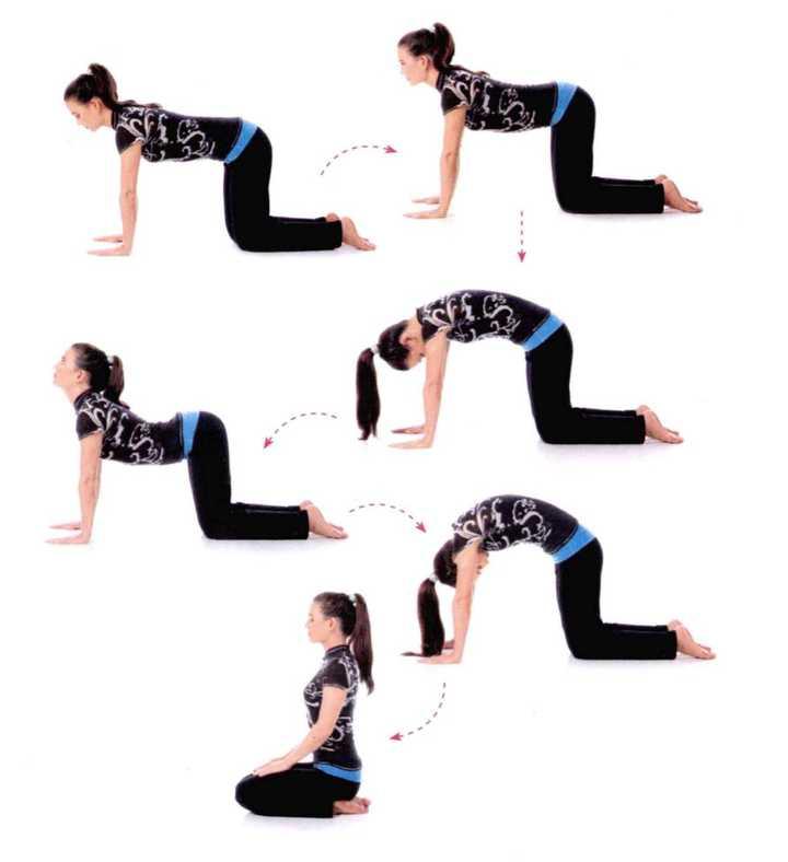 瑜伽中猫伸展式的注意事项是什么? 瑜伽伸展注意事项图片