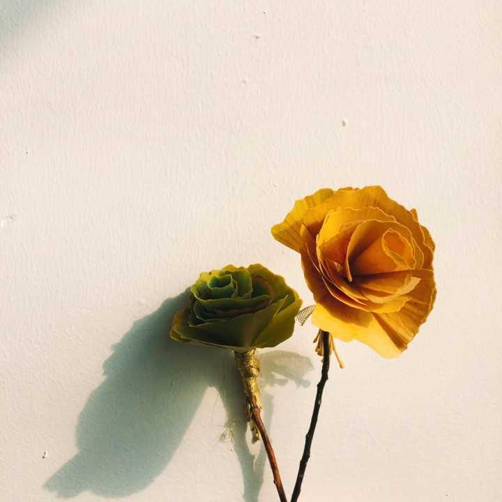还有和闺蜜一起用银杏叶做的玫瑰花图片