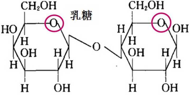 以下是乳糖结构式,红色圈出来的氧在开链状态下是醛基.