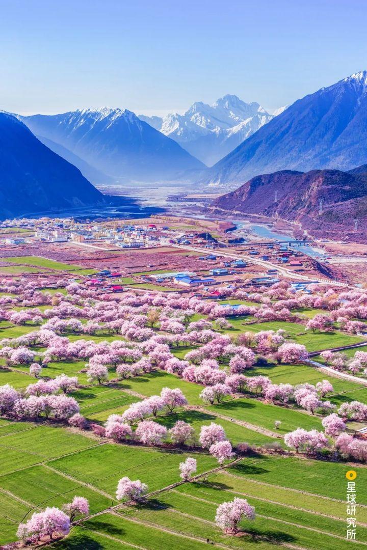 中国最美的春天在哪里?