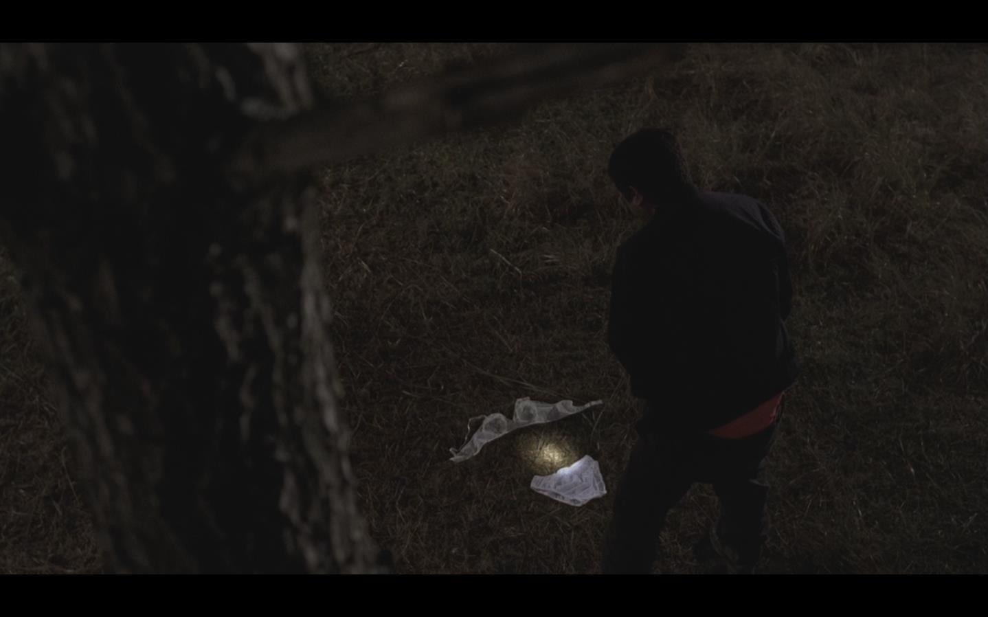 电影 杀人回忆 在哪里可以观看到