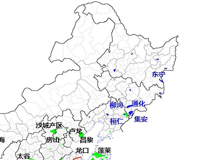 东北的冰酒产区主要是辽宁桓仁,吉林通化,还有黑龙江东宁,东北三省