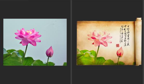 用ps把效果拍摄的南京数码制作成中国风的照片荷花室内设计师工资标准图片