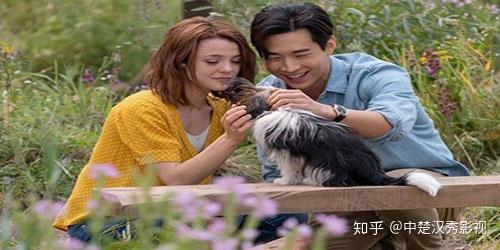 《一条狗的使命2》:你一生会遇到很多人,可我的生命里