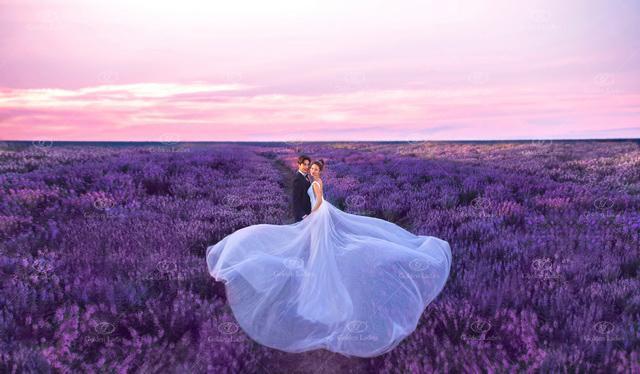 """""""我希望我的婚纱照背景是一片大大的花海"""";""""我希望我的婚纱照是以图片"""