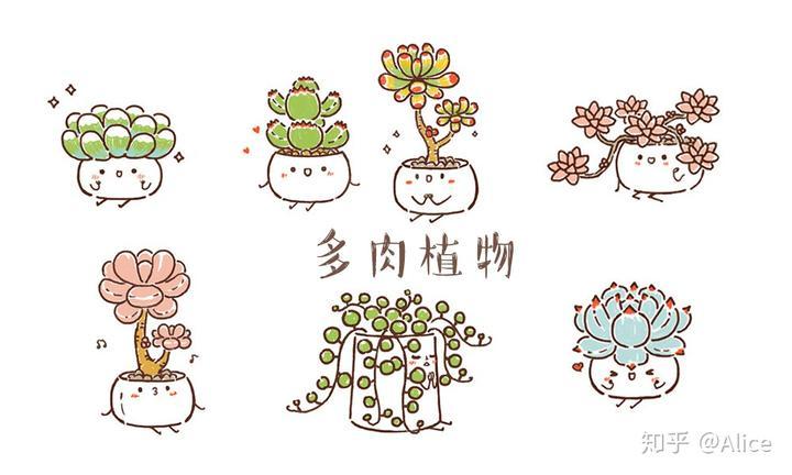 超萌的手绘t恤图案——多肉植物图案图片