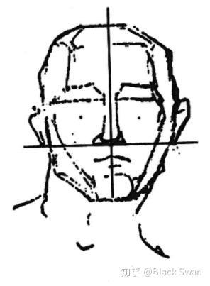 伯里曼的简笔面部结构图