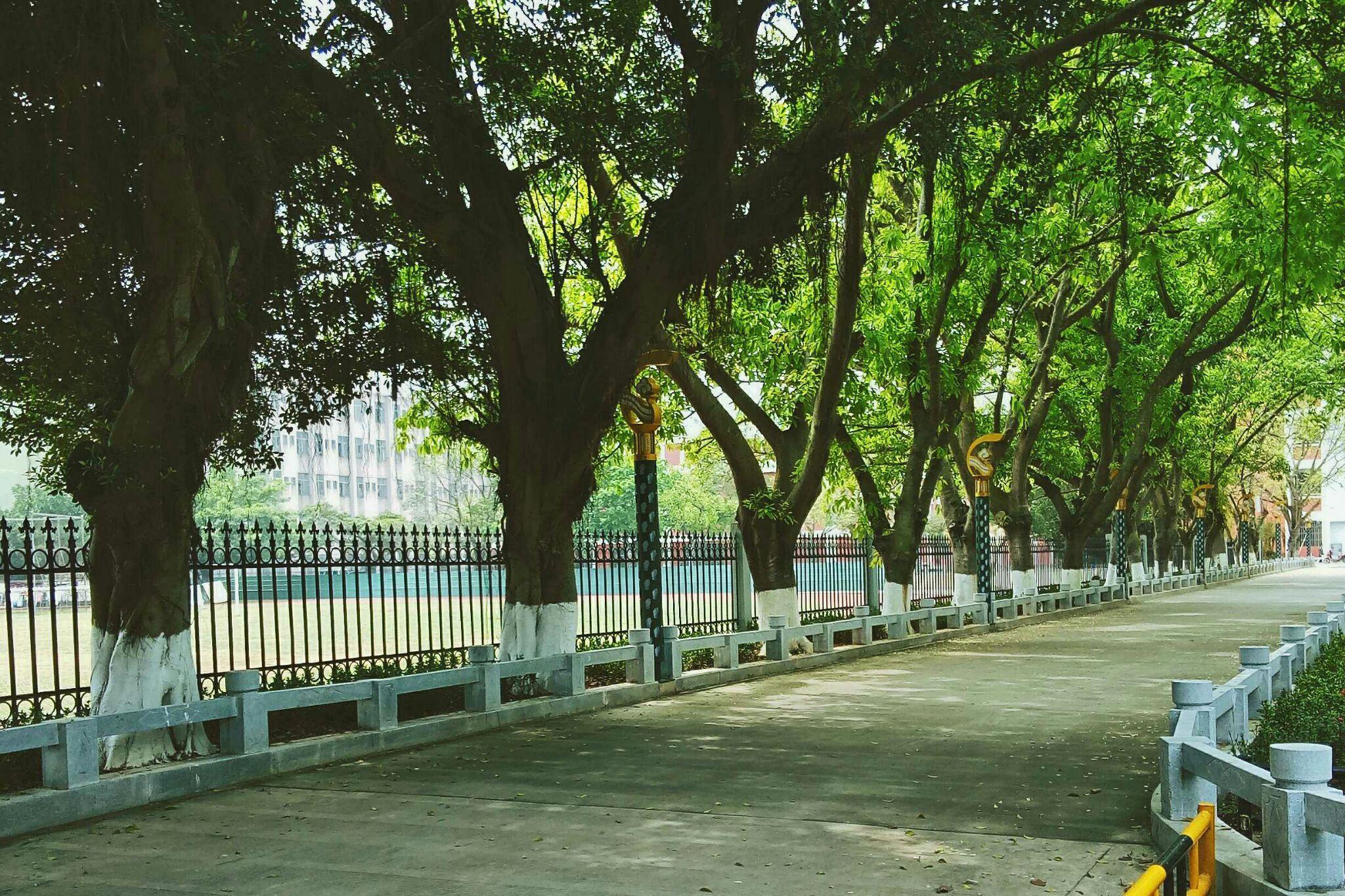 中国各地高中生的v最好有区别?-泱泱的回塘沽最好高中排名图片