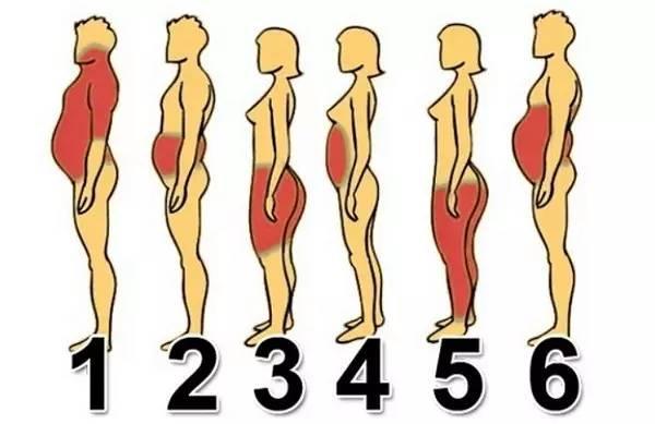 最快的减去赘肉的腹部?小君v赘肉博微图片