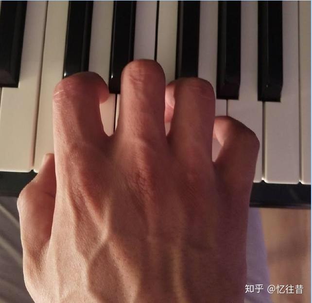 你有五个手指,大拇指开始到小拇指,分别是12345指.图片