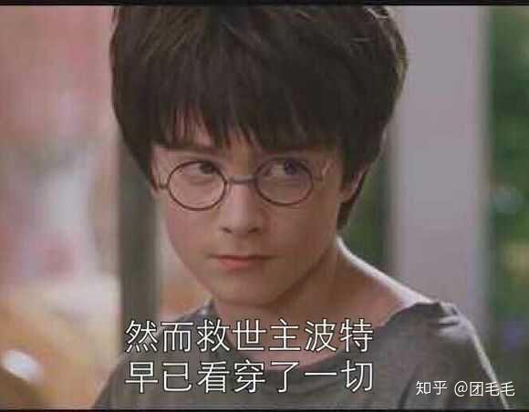 有什么哈利波特迷才懂的梗?图片