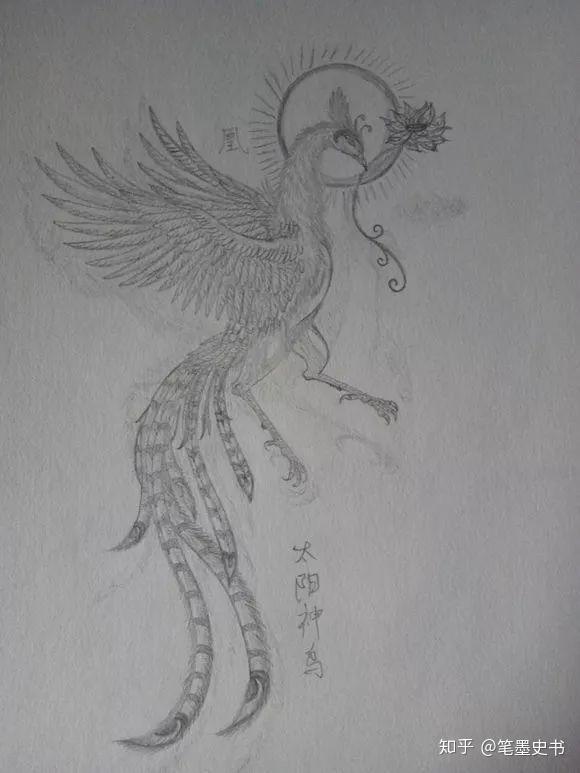 凤凰的画法铅笔画步骤