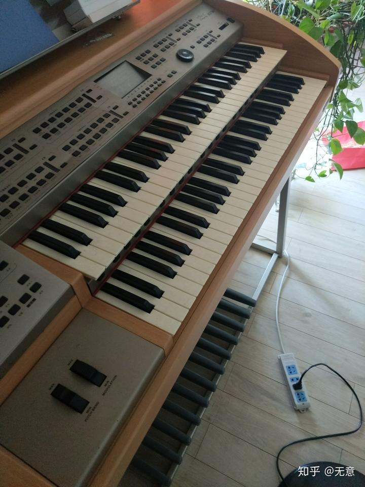 双排键 电子琴 钢琴 学哪个?图片