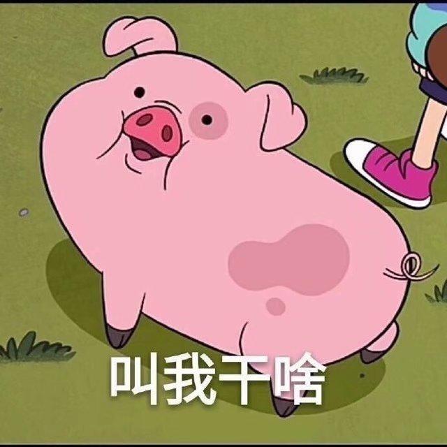 有哪些猪的搞笑图片或者表情?表情表情动画包图片