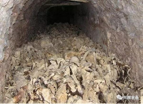 安徽万人坑灵异事件,小痞子盗取万人坑土被亡灵杀死
