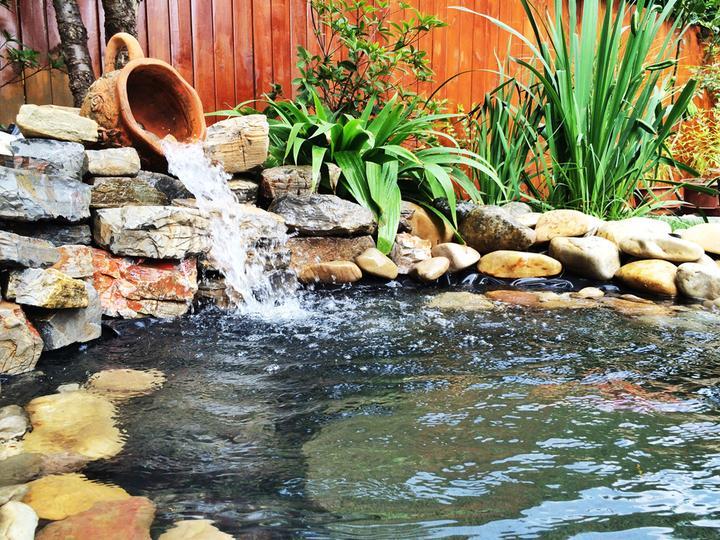 庭院建造池塘的造景过程【转自weibo:@马锐拉】插图(33)