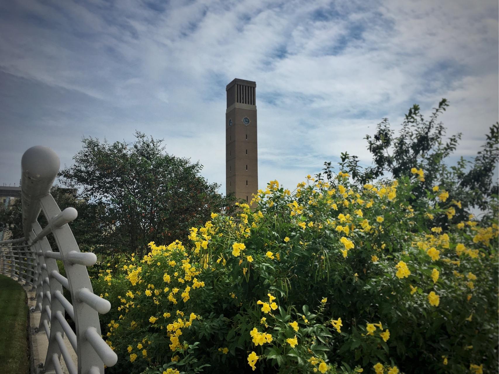 在德州农工大学 (Texas A&M University) 就读是怎样一番体验?