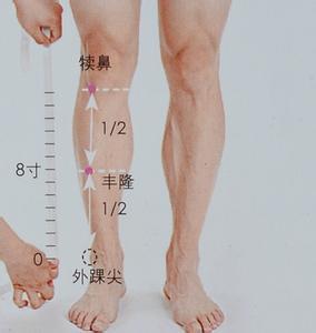 脚跟骨_是否存在睡穴或者使人清醒的穴位? - 知乎