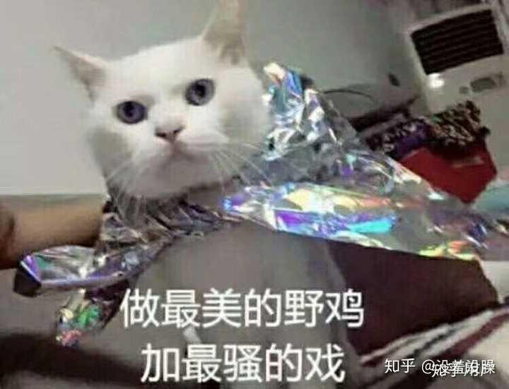 图片[2]-来看看这些是不是你追女生失败后才知道的-李峰博客