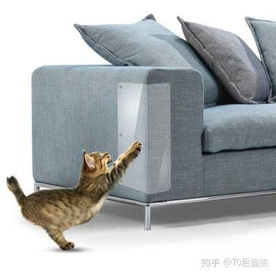 家里墙纸被猫抓坏了怎么补救?