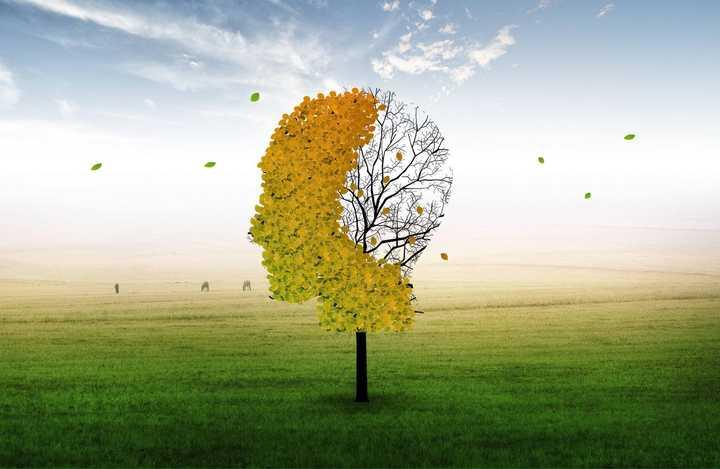 怎么有效锻炼自己的记忆力?