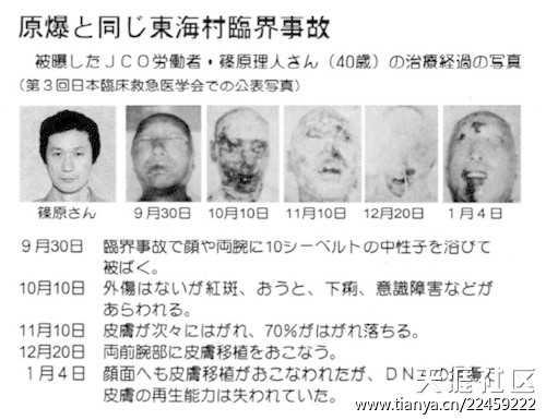 事故 臨界 東海 jco 村