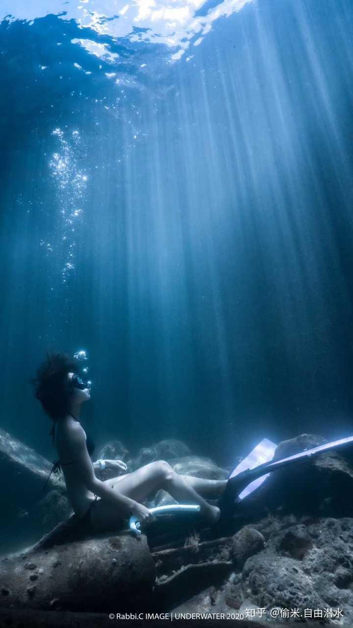 从一个潜水小白,到自由潜教练要经历什么?