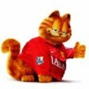 老特拉福德的猫