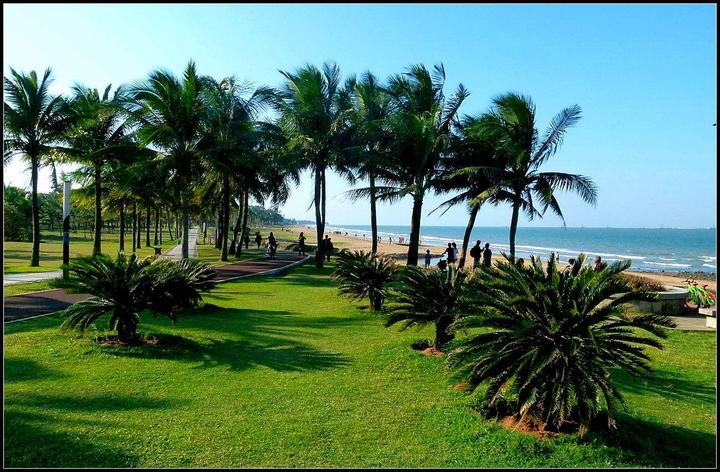 为什么海南人离不开椰子?