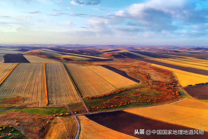 齐齐哈尔是哪个省(齐齐哈尔生活是什么样的体验呢)