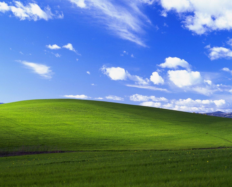 Zoom 背景 画像