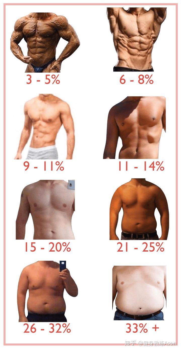 体 脂肪 率 男性 理想