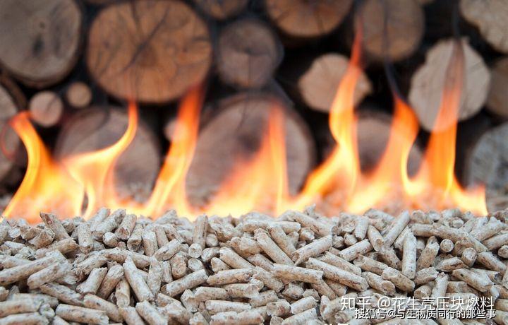 生物质燃料是替代化石能源的可持续再生环保能源
