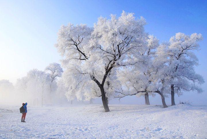 冬天去哪玩(什么地方适合冬天旅游呢)
