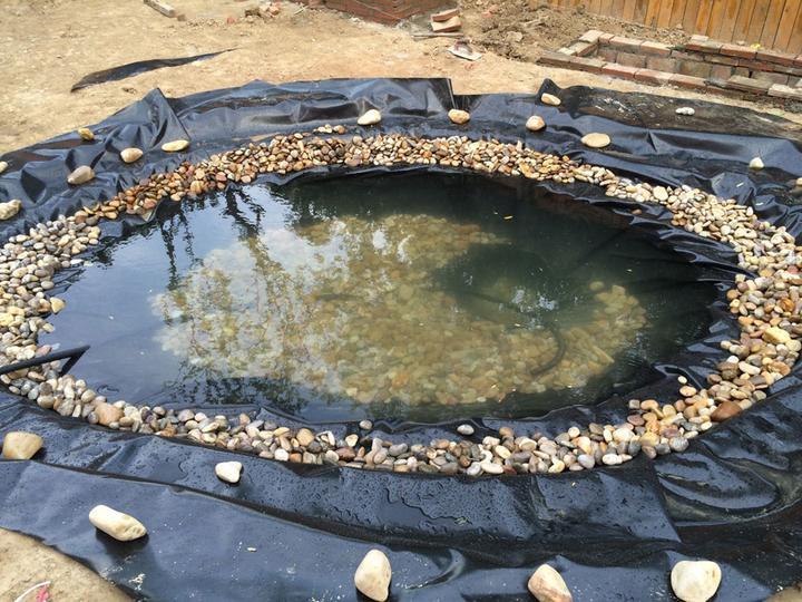庭院建造池塘的造景过程【转自weibo:@马锐拉】插图(25)