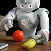当机器人遇上了学习