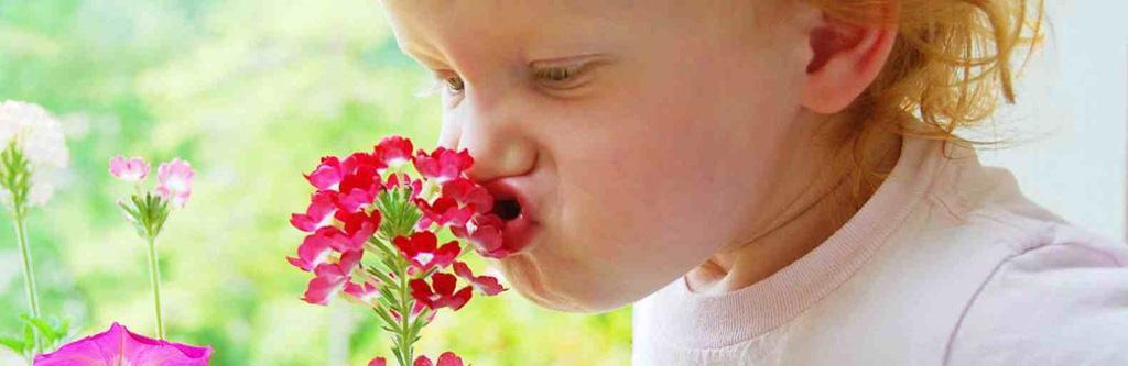 人类嗅觉:为啥你喜欢这个味道?