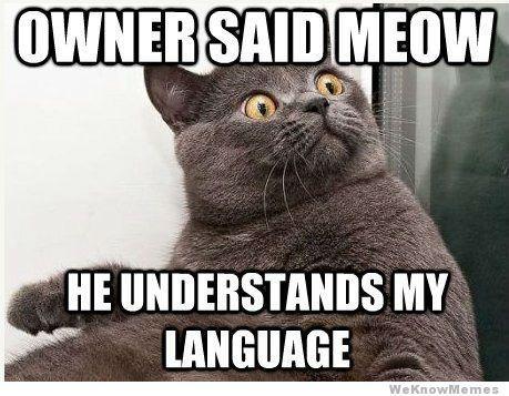「十二周入门语言学」第一周·语言学不是学语言(下)