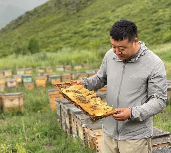 蜜蜂花粉的保質期多久了?蜜蜂花粉的儲存方法和保質期?