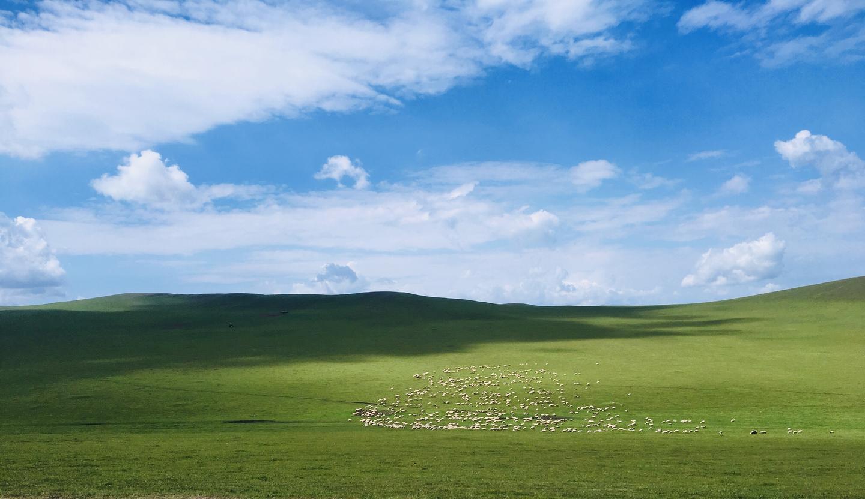 杀托必读:农业VS游牧
