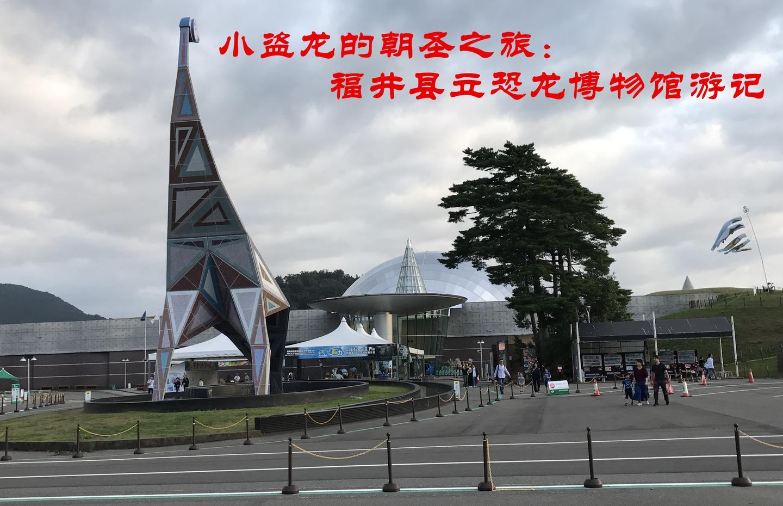 博物館 福井 自然 史