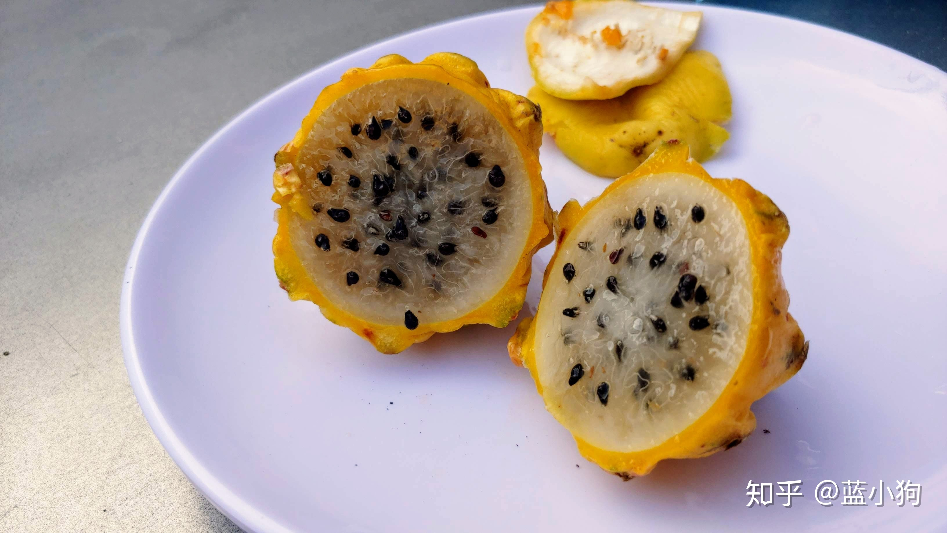 100种水果的名字