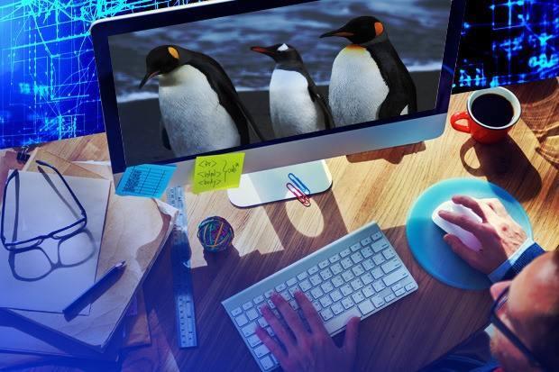 Linux命令行有这么多的好东西?