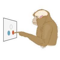 行为与认知神经科学