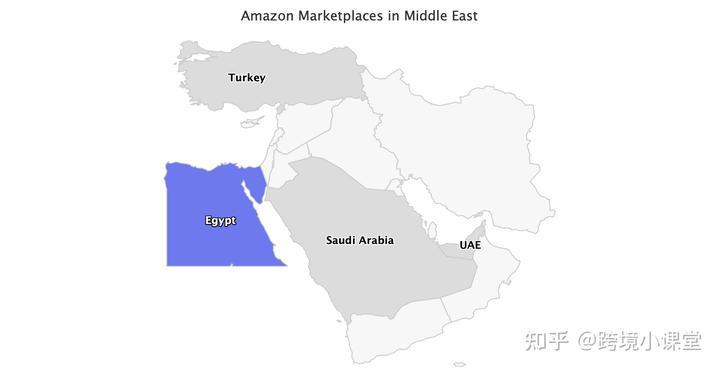独立站市场红海—中东市场COD迅速崛起!!!插图