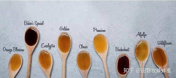 黑色蜂蜜好或蜂蜜好吗?蜂蜜是黑色还是黄色?