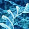 容谨 - 生物科研教会我们的日常小知识
