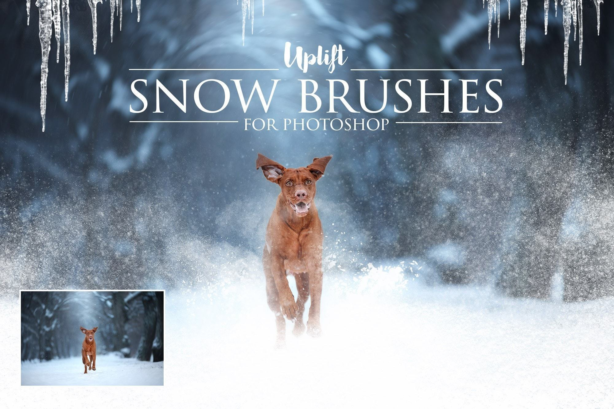 【S545】冬天雪地雪景后期PS笔刷 25 SNOW BRUSHES FOR PHOTOSHOP