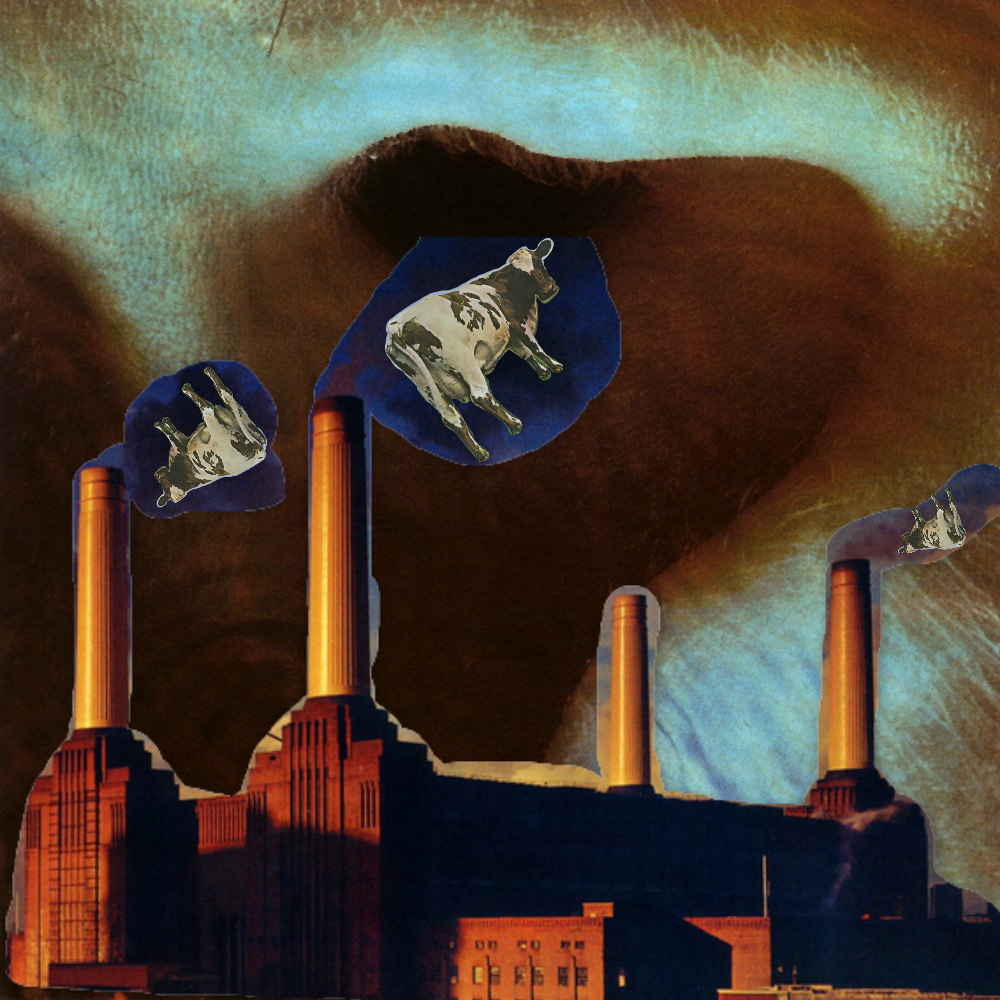 【乐评】Pink Floyd《Atom Heart Mother》、《Meddle》、《Animals》